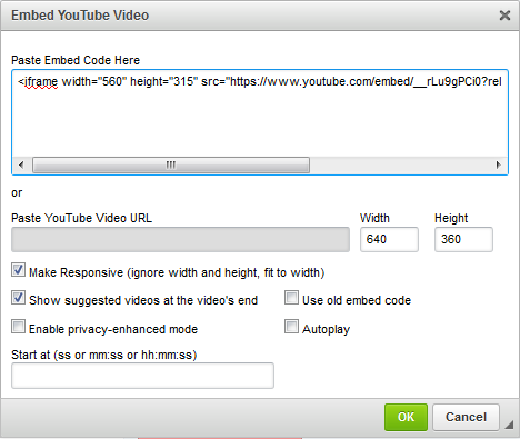 Adding a video to your website